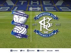 Birmingham City Fc #Amandaforeveraloe Birmingham City Fc, Forever Aloe, Football Team, Blues, Cute Animals, Baseball Cards, Sports Logos, Image, Random