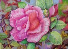 Rose pink by 1976Kunako.deviantart.com on @DeviantArt