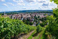 Landwirtschaft Weinberg Landschaft Im Süden Von Deutschland ...
