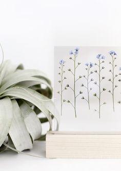 Blooming Pressed Flower Craft