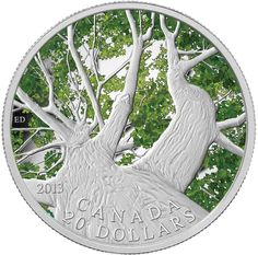 Canada 2013 $20 1 oz Fine Silver Coin - Canadian Maple Canopy (Spring) - Mintage 7500 (2013)