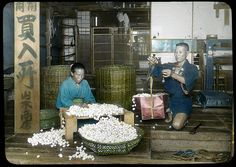Cocoons purchased and inspected  Enami Studio Lantern Slide No : 637.  About 1920's, Japan