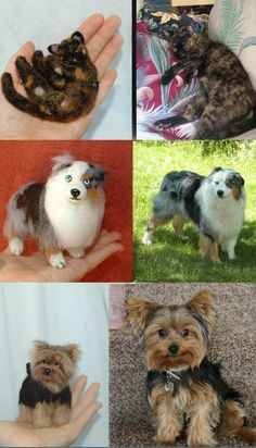 One Of A Kind (OOAK) Custom Needle Felted wild animal or likeness of your dog, cat, pet portrait / soft sculpture by Amber (Chow Chow, Bunny Rabbit, Lop, Yorkie, Yorkshire terrier, Aussie, Australian Shepherd, cat, kitten, tortoise shell, tortie)