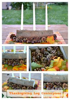 DIY: Thanksgiving and Harvest Log Candle Holder Centerpiece
