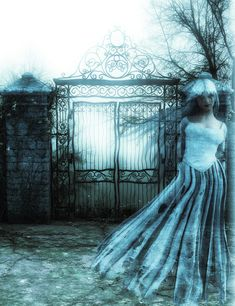 Paranormal and Dark Romance Collection Free Pictures, Free Images, Fence Trees, Creatures Of The Night, Ghost Stories, Paranormal, Mists, Gate, Ball Gowns