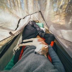 RV And Camping. Ideas To Help You Plan A Camping Adventure To Remember. Camping can be amazing. You can learn a lot about yourself when you camp, and it allows you to appreciate nature more. There are cheerful camp fires and hi Camping Bedarf, Camping Hacks, Outdoor Camping, Backpacking, Travel Hacks, Travel Tips, Family Camping, Beach Camping, Camping Outdoors