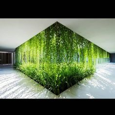 #ecofriendly #green #greenliving #architecture #sustainableliving #sustainablysourced #ecotimber #greenarchitecture #organiclife #nature #organicliving #natureisbeautiful #sustainableaustralianhardwood #environmentallyfriendly #cleanenergy #beautiful #eco #toxicfree #amazing #jealous #sustainability #garden #greenwall #plants #indoorplants #interior #outdoorsinside  Regram from @modernhepcat:
