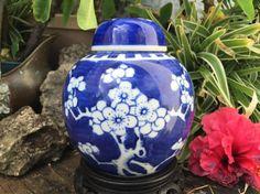 Kangxi Ginger Jar Cobalt Blue Prunus Chinois Chinese Hawthorne Plum Deksel Vaas Lidded Jar Urn Vase de Chine Tobacco Pot Couvert China 1800s