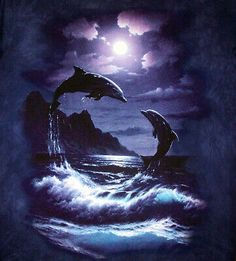 Joey Brumbaugh uploaded this image to 'Ocean-Pictures/Dolphins'. See the album on Photobucket. Orcas, Water Animals, Animals And Pets, Strange Animals, Beautiful Creatures, Animals Beautiful, Dolphin Art, Wale, Delphine