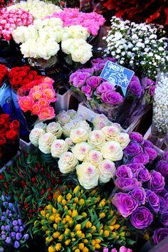 Columbia Road Flower Market in East London.