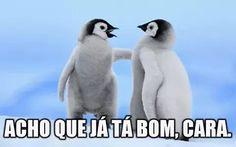 """Aécio Neves no Twitter: """"É inaceitável o que está acontecendo."""" ."""