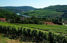""""""" Wenn Ihr also wollt mal wissen, weil man`s manchmal tut vermissen, ...  wie der Saarlandwein so schmeckt, und die Neugier ist geweckt, für Wein wüsst ich für Euch nen Fleck,... das Saarländisch Dreiländereck! """"  Noch ein Auszug aus meinem Saarländischen Weingedicht. :-)"""