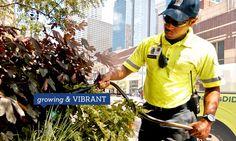 Minneapolis Downtown Improvement District Growing & Vibrant