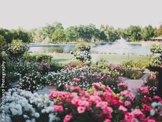 The Gardens at Heather Farm Walnut Creek California Wedding Venues 5