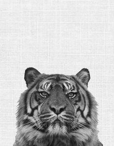 Tiger Print Tiger Art Printable Art Black And White Tiger