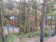 Cabin in the Smokey Mountain's