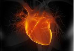 Herzinfarkt - Anzeichen und Symptome - Besser Gesund Leben