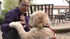 Dogs 'Klimb' to New Heights