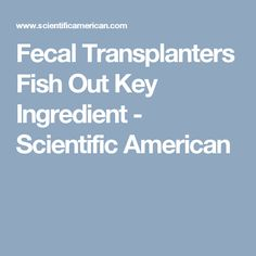 Fecal Transplanters Fish Out Key Ingredient - Scientific American