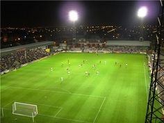 Dalymount Park, Dublin, Ireland Dublin Ireland, Football, Autumn, Park, Winter, Places, Soccer, Winter Time, Futbol