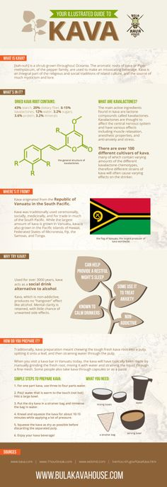 Our team at Bula Kava House created this illustrated guide to kava to educate interested beginners! This guide to kava covers a brief history of kava, explains the ingredients, lists common uses for kava, and our recommendations on how to prepare kava.  Kava is a plant grown in the South Pacific, the roots of which are used to make a beverage known for its calming, muscle relaxing, anti-anxiety effects. #kava #anxiety #stress #health #sleep #drug #infographic #design