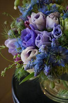 anemone and muscari