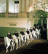 Spanish Riding School, Vienna. You can watch them train or attend a performance of the Lipazzaners.