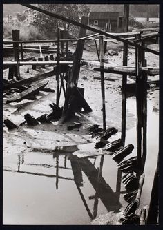 André Kertesz, Greetings ca. 1940 Gelatin silver print 24.3 x 17.2 cm. Gift of Beaumont Newhall 1980.0406.0001 Eastman Museum