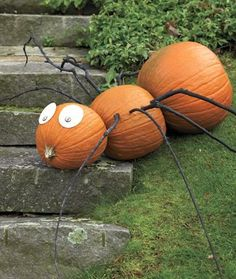 DIY HOLIDAY :Giant spider made with pumpkins!