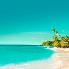 Mt. Irvine, Tobago