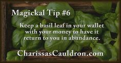 Tip - Keep basil leaf in your wallet with your money to have it return to you in abundance.Magickal Tip - Keep basil leaf in your wallet with your money to have it return to you in abundance.