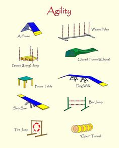 Dog Agility Course -The Eequipment mentioned in our article for dog agility training includes dog weave poles, dog jumps, dog tunnels, dog walks and more! Agility Training For Dogs, Dog Training Tips, Dog Training Equipment, Agility Course For Dogs, Dog Training Courses, Training Schedule, Dog Playground, Playground Ideas, Dog Yard