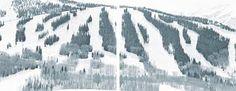 Image result for walter niedermayr