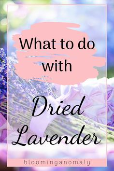 Not sure what to do with all your dried lavender? Make a sweet smelling sachet with your dried herbs. Click on the pin to watch a video about how to make a sachet with dried lavender. #driedlavender #driedlavenderuses #driedlavenderrecipes #whattodowithdriedlavender Lavender Uses, Dried Lavender Flowers, Lavender Sachets, Healing Herbs, Medicinal Herbs, Growing Herbs, Garden Gifts, Herb Garden, Gardening Tips