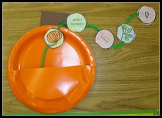 Cute Pumpkin sequence activity found on Today in First Grade...