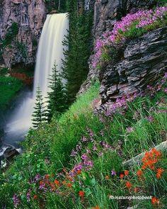 Tumalo Falls in Summer~Bend, Oregon