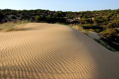 Country Roads, Dune, Scenery