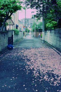 Aesthetic Japanese street