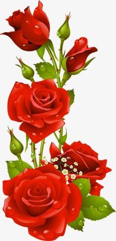Red Roses Vector, Kyrmyzy gul png resimler, png kyrmyzy gul - Clip Art Library - My site Beautiful Rose Flowers, Beautiful Flowers Wallpapers, Red Flowers, Red Roses, Rose Frame, Flower Frame, Flower Art, Flower Phone Wallpaper, Flower Wallpaper