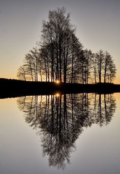 Perfect Reflection ~by Audun Bakke Andersen. If you look real close you can see it's not perfect symmetry after all. https://www.flickr.com/photos/audunbakkeandersen/301001642/
