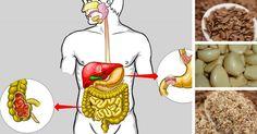 5 τροφές που θα καθαρίσουν γρήγορα και φυσικά το πεπτικό σας σύστημα και θα χάσετε και κιλά!  #Υγεία