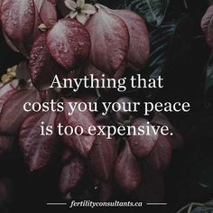 Anything that costs you your peace is too expensive. surrogacy. surrogate. canada. infertility. egg donor. egg donation. motherhood. quote. quote of the day. inspiration. peace. yoga. meditation. canadian fertility consulting.