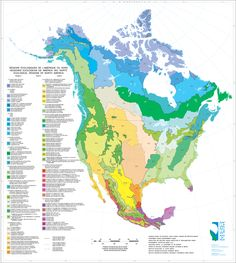 70 maps that explain America: From crossing the Bering Strait to the Great Recession.