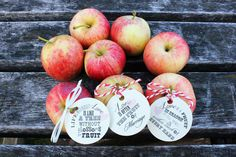 LOVE Favor Tags // Fall Country Wedding // Love von 3LittleFinches, $10.00