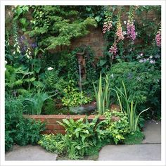Small water feature in shady corner with old pump