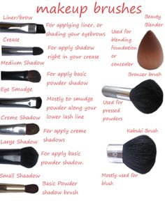 Makeup Brush Break Down     The correct makeup brush can create a masterful application of the sexiest eyeshadow, contoured and highlighted looks. Here is a complete break down on the most used brushes, and a explanation of what they do.     Share This Content  Photo Courtesy Of http://kmakesithappen.blogspot.com/2012/09/makeup-brushes-and-their-uses.html