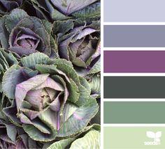 color crop ♥