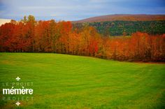 Gorgeous fall foliage along Route 165 outside Thetford Mines, in the Chaudière-Appalaches region of Québec.