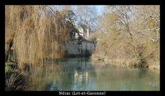 Lumière d'hiver sur Nérac et la Baïse -7