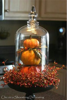 Stacked pumpkins in a bell jar.